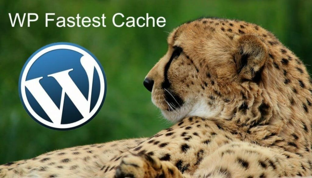 WP Fastest Cache Review