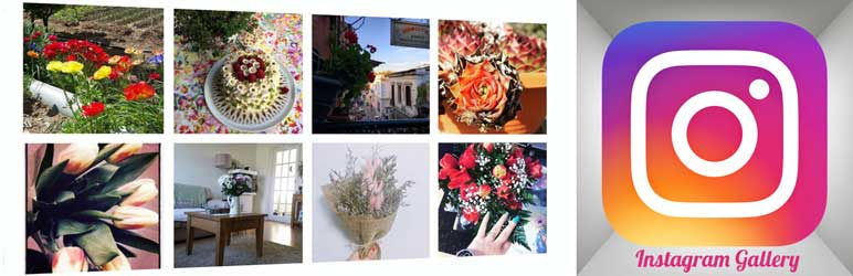 Instagram Gallery WordPress Plugin