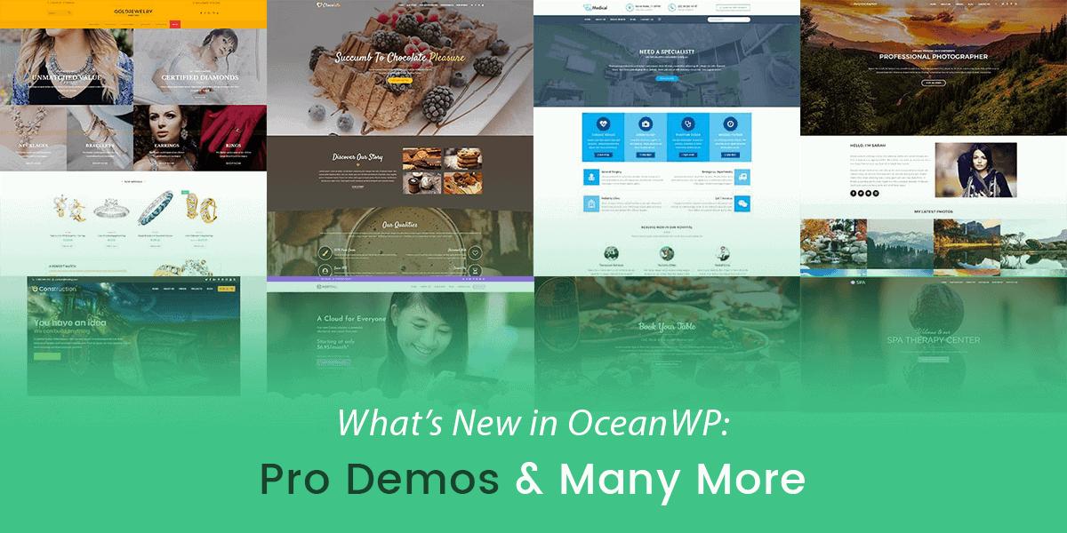 Pro Demos Oceanwp