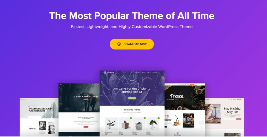 top_5_wordpress_themes_astra
