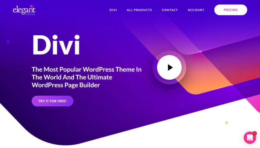 top_5_wordpress_themes__divi